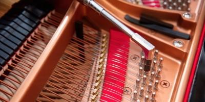 Accademia - Musique classique - Calenzana