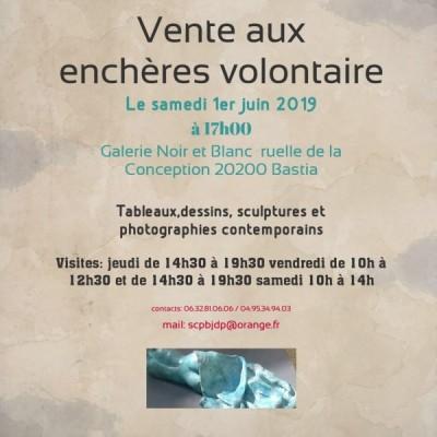 Vente aux enchères volontaires - Galerie Noir et Blanc - Bastia
