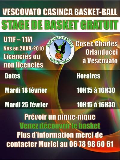 Stage de Basket - Gratuit - COSEC Charles Orlanducci - Vescovato