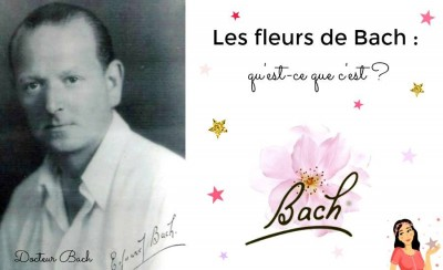 Formation Fleurs de Bach & Emotions - Béatrice Sagnet  - Saint-Florent
