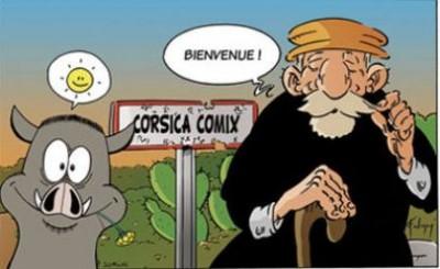 Vacances scolaires - Stage découvertes de la bande dessinée avec Frédéric Federzoni - Palais Fesch - Ajaccio