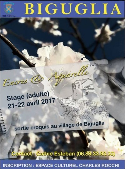 Stage adulte Encres & aquarelle