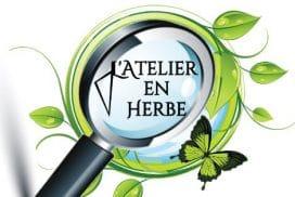 L' Atelier en Herbe - Alexandre Créa