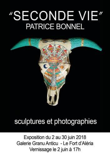 EXPOSITION DE PATRICE BONNEL SECONDE VIE
